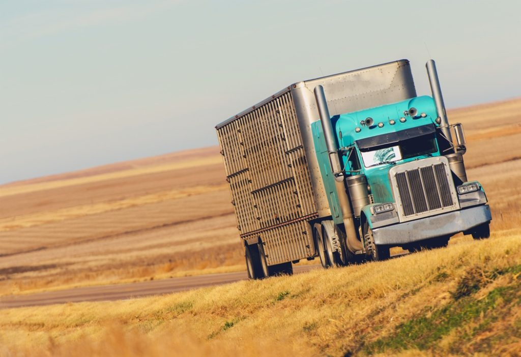 truckers insurance guide